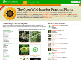 Practical Plants
